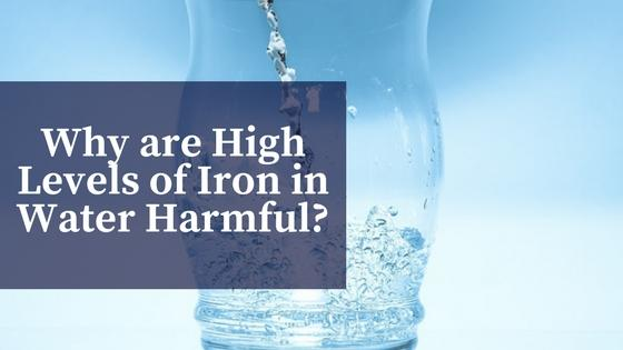 What are the Effects of High Levels of Iron in Water?