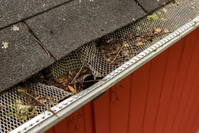 Why Should We Maintain Our Gutters?