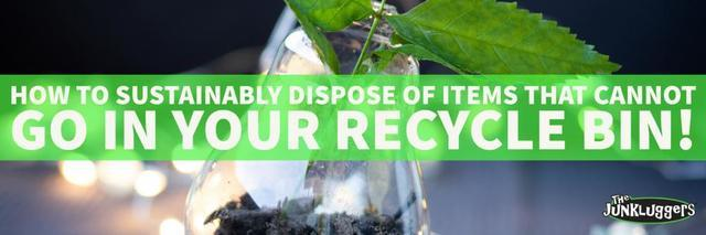 17 Items That Cannot Go in Your Recycle Bin & How to Sustainably Dispose of...