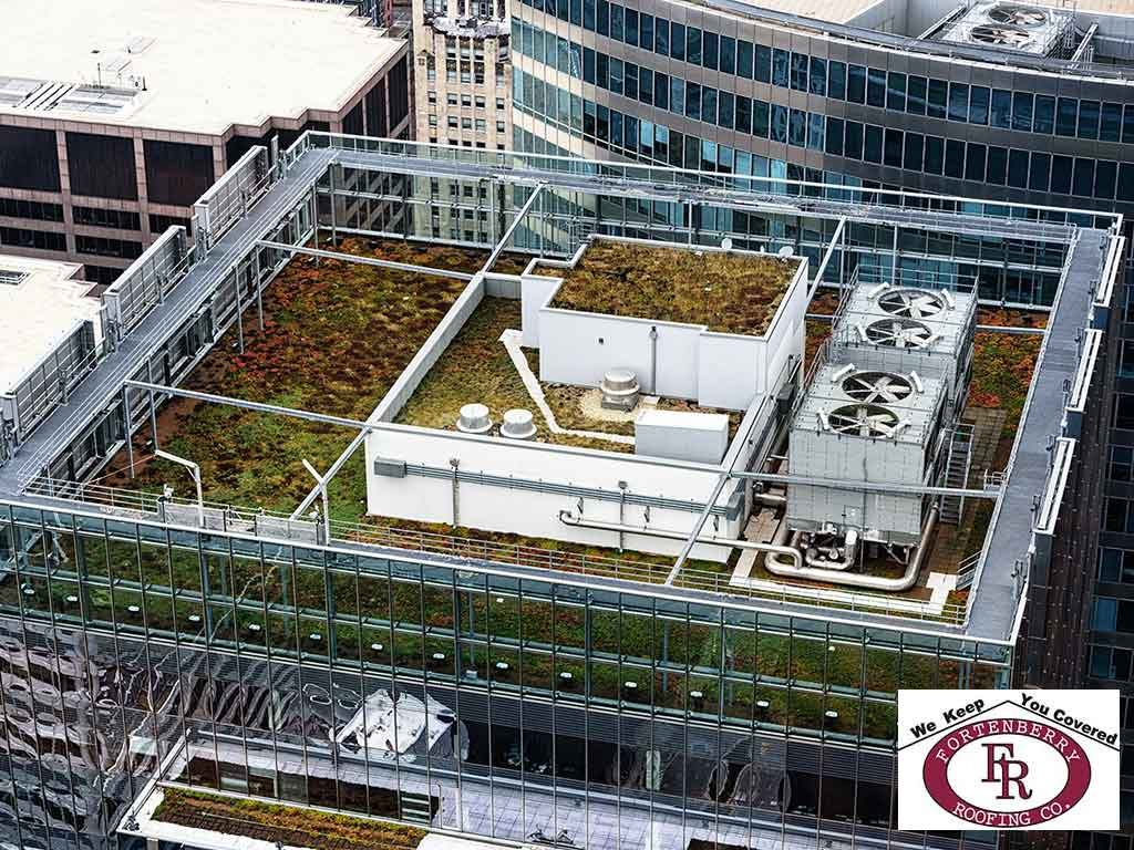 Blue Roofs and Why They're Being Called the New Green Roof