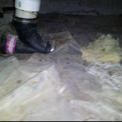 Crawlspace issues in Arlington,TN