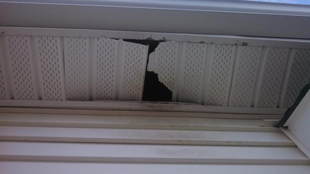 Raccoons gain entry through soffits in Lanoka Harbor, NJ