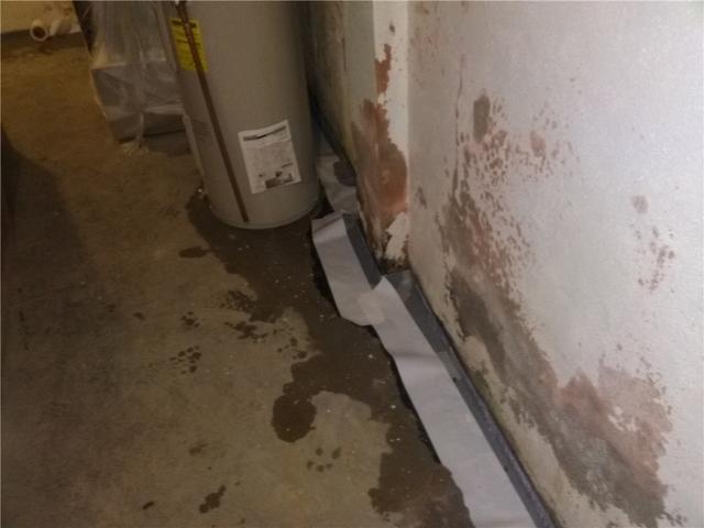 Basement Drain Keeps Family Safe in Bellmawr, NJ