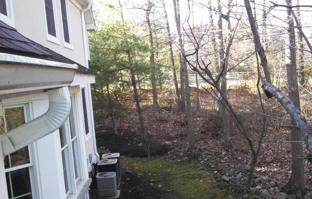 Squirrels gain easy access to attic in Basking Ridge, NJ | Squirrel Removal...