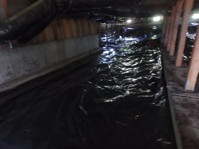 Freeland Crawl Space Waterproofing