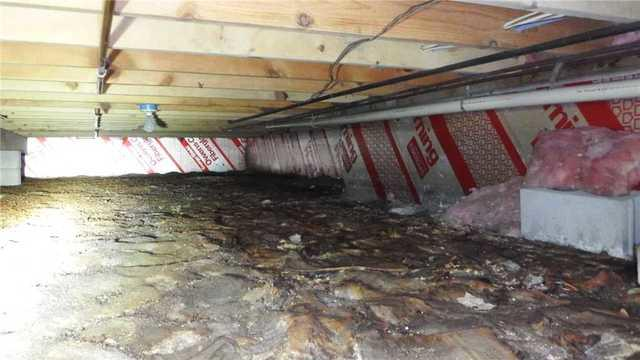 Dealing with Deadly Mold in a Prudenville Crawl Space