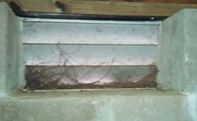 Broken pipe in crawl space leads to yucky, muddy mess - Crawl space repair ...