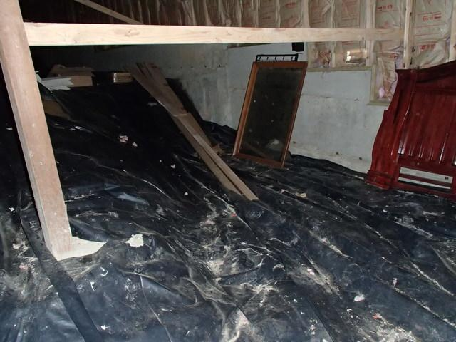 Waterproofing a Bellingham Crawl Space with CleanSpace and Drainage Trenchi...