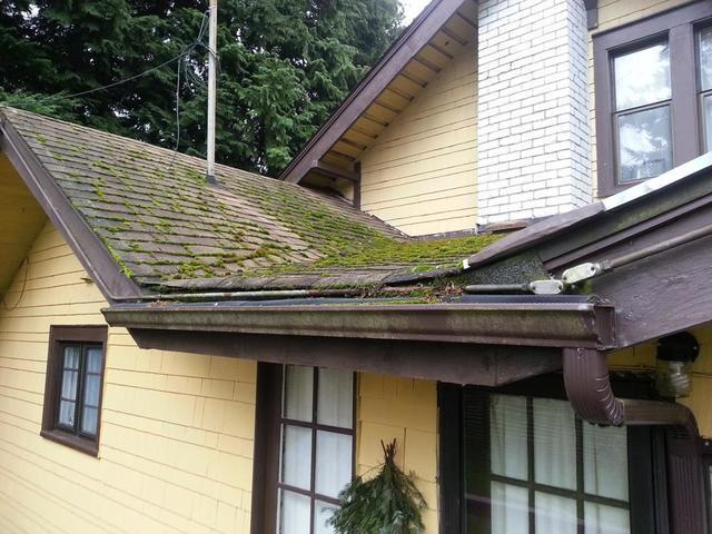Peace of Mind and a Home Restored in Seattle