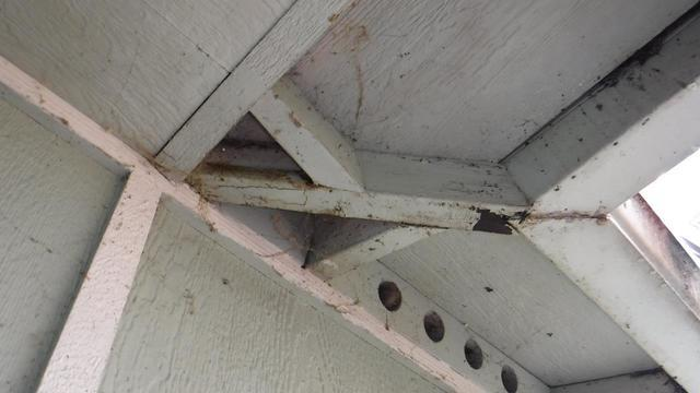 Major Roof Problems from Bad Gutters in Seattle