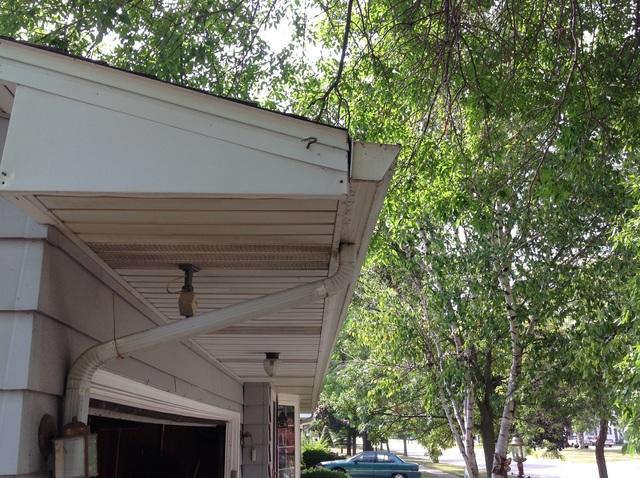 Clogged Gutters in DePere