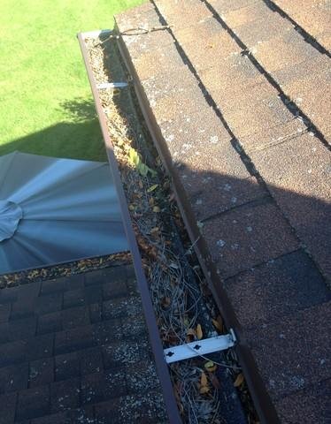 Gutters Clogged From Pine Trees in New Holstein, WI