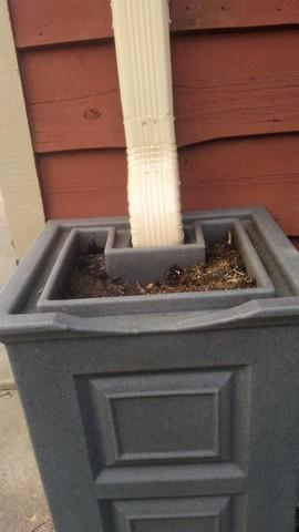 Custom Downspout into Rain Barrel Flower Pot in Rice, MN