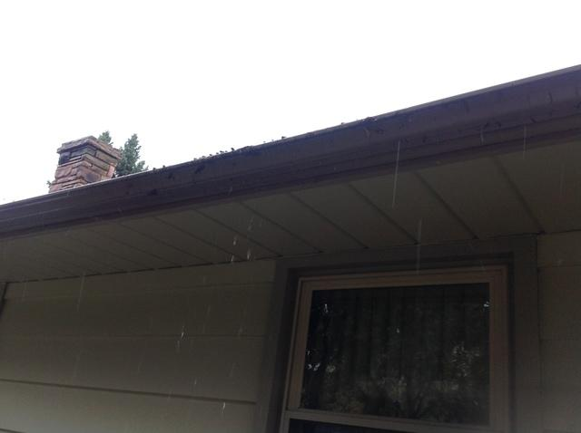 Open Style, Overflowing Gutters Replaced by LeafGuard in Appleton