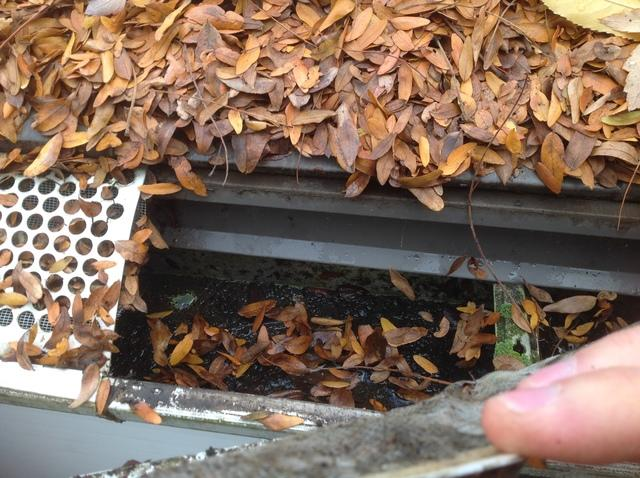 Why Gutter Screens Don't Work in Wisconsin