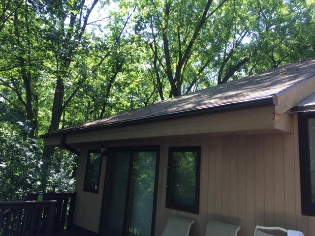 Clogged Gutters in Princeton, WI