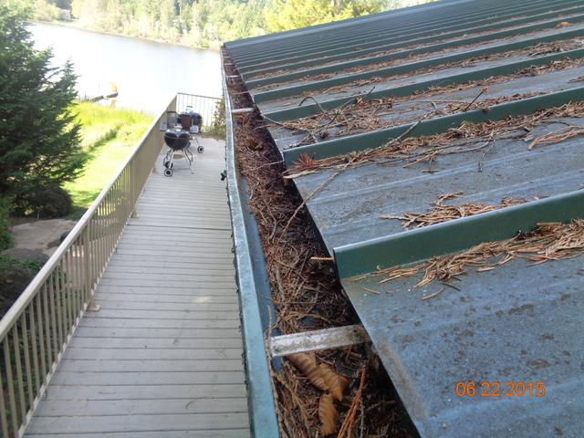 Lake cabin in the Lacey, WA with metal roof and gutters clogged with needle...