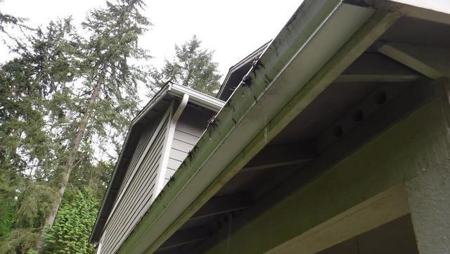 Snoqualmie, WA area home with  lack of downspouts and tie-ins for gutters