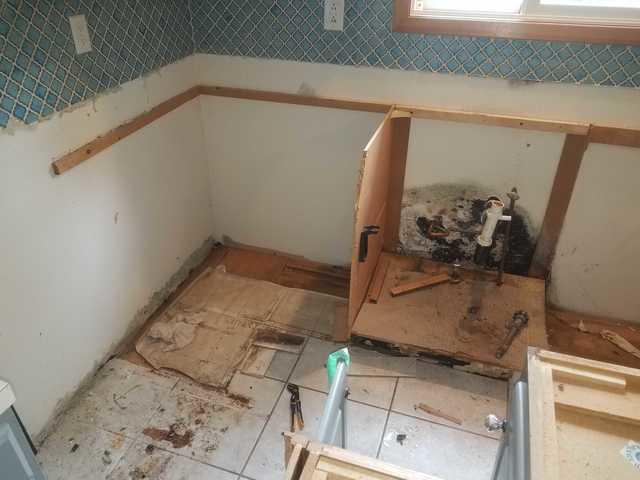 Our Mold Removal Services - Water leak causes major mold ...