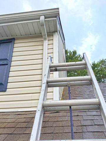 Raccoon Removal in Manahawkin, NJ