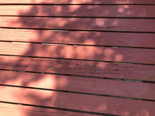 Deck Carpentry and Staining in Northford, CT