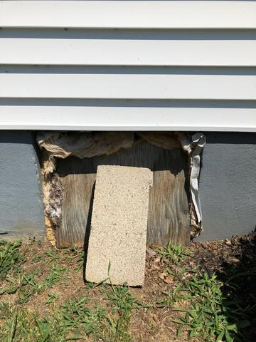 Mold No More in This Greenville, KY Crawl Space