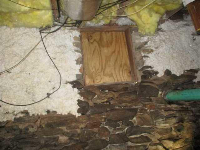 Monster Crawl Space Saved