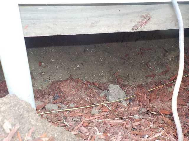 Leveling a Sunken Concrete Barn Floor in Three Rivers, MI