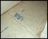 Moman Residence—Scottsdale