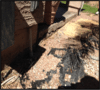 Valley Home with Horizontal Cracking