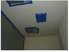 Mold Remediation in The Colony Texas
