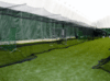 Presentation College Athletic Dome