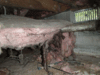 Beautiful Home Needs a Beautiful Crawl Space - Photo 1