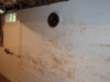 Basement and Crawl Space Combination - Photo 12