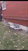 Larger Windows and a Leak Free Basement, Toronto, ON - Photo 1