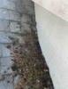 Shingle Roof Installation in South Hamilton, MA - Photo 2
