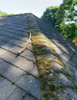 Asphalt Roof Replacement - Photo 3