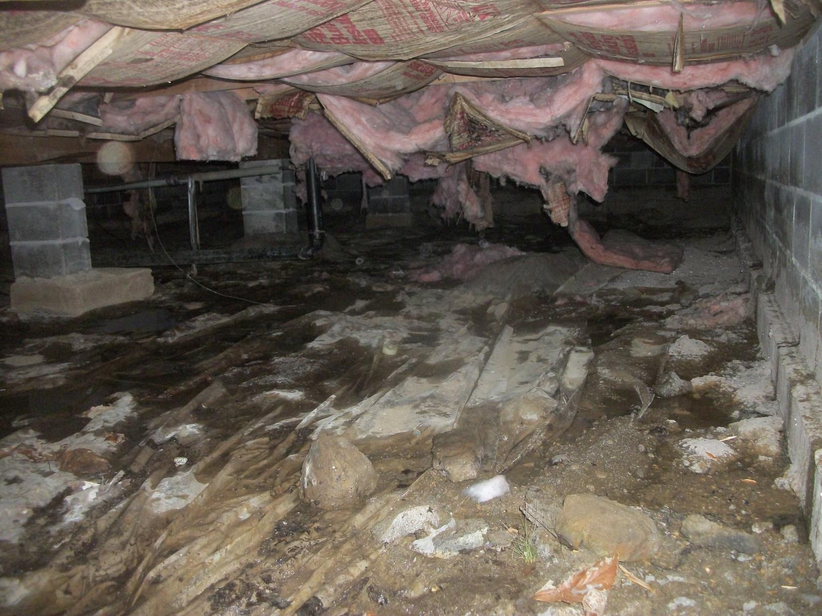 Damp and Dirty Crawl Spaces