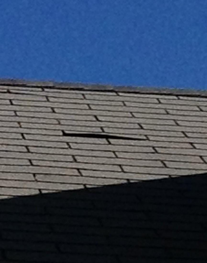 Shingles Buckling and missing