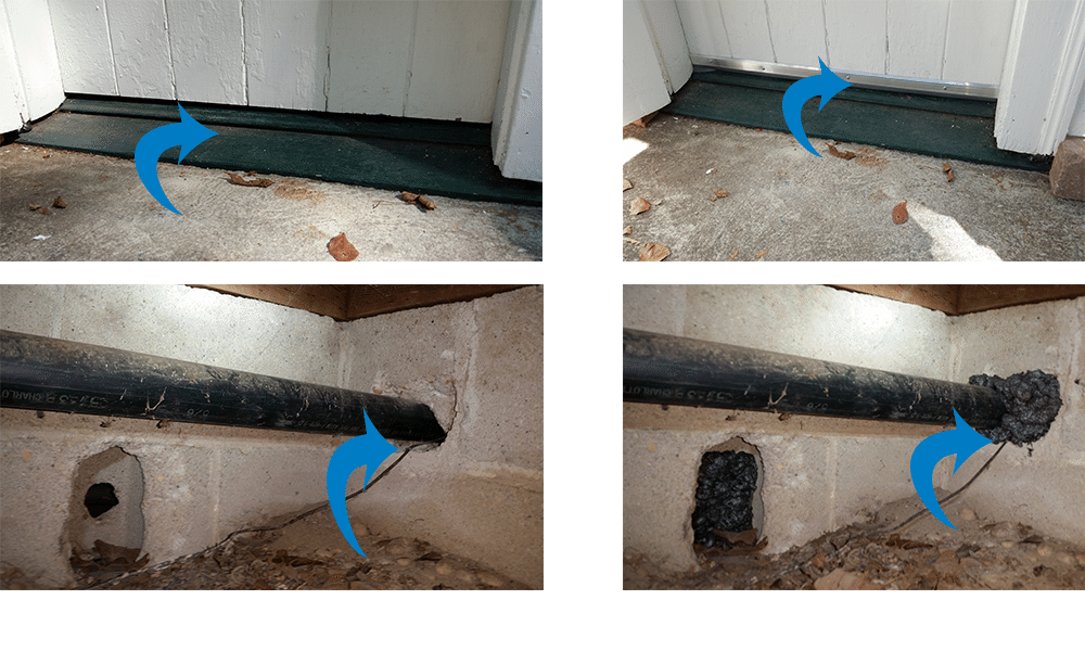 Gaps under doors and around pipes lets in Rodents
