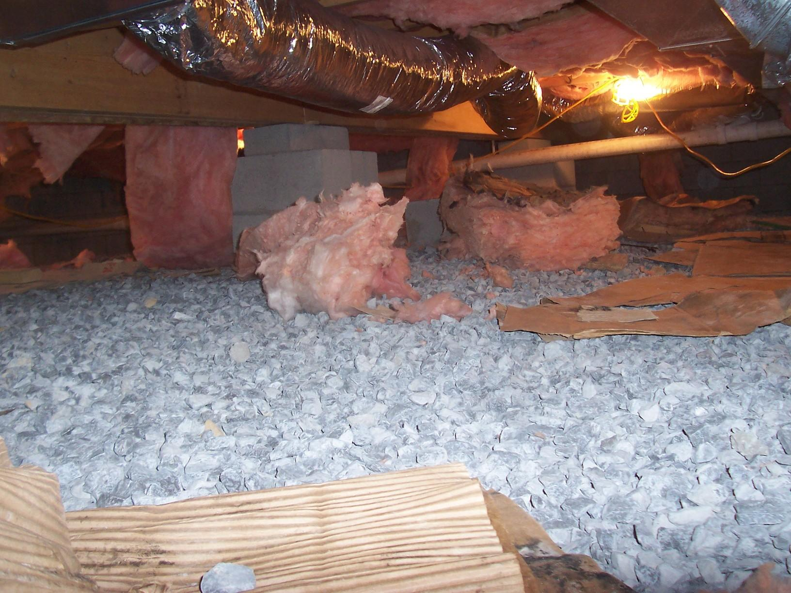 Dirty Crawl Space