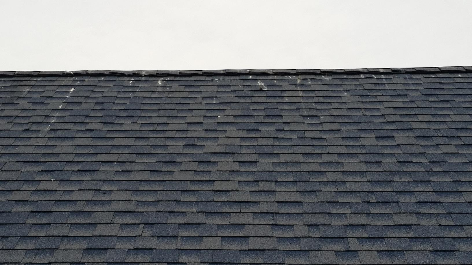 This roof will be vulture-free after installation of our deterrents.