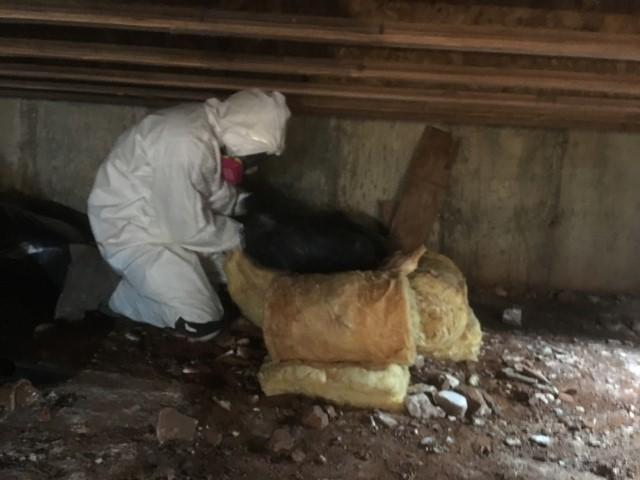 Subfloor Fiberglass Batt Insulation Removal