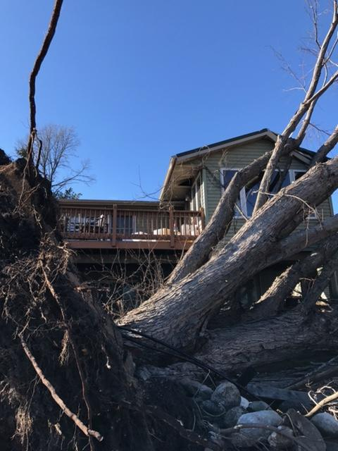 Skies are Blue, but the Damage is Done