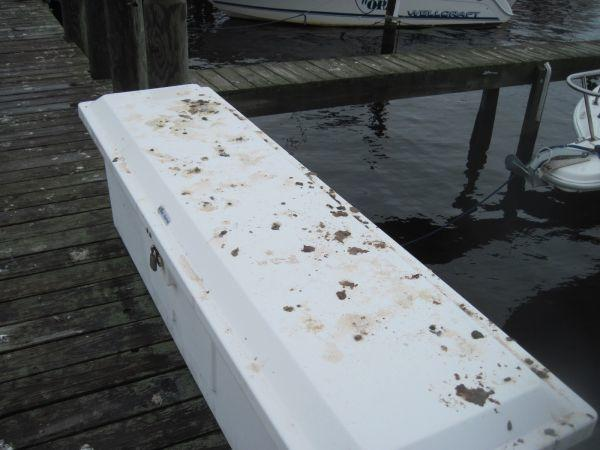Pigeon Damage on the Jersey Shore