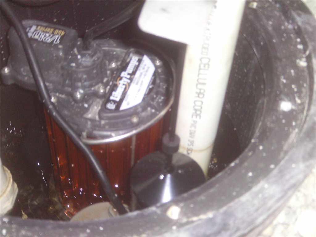 Open-Hole Sump Pump