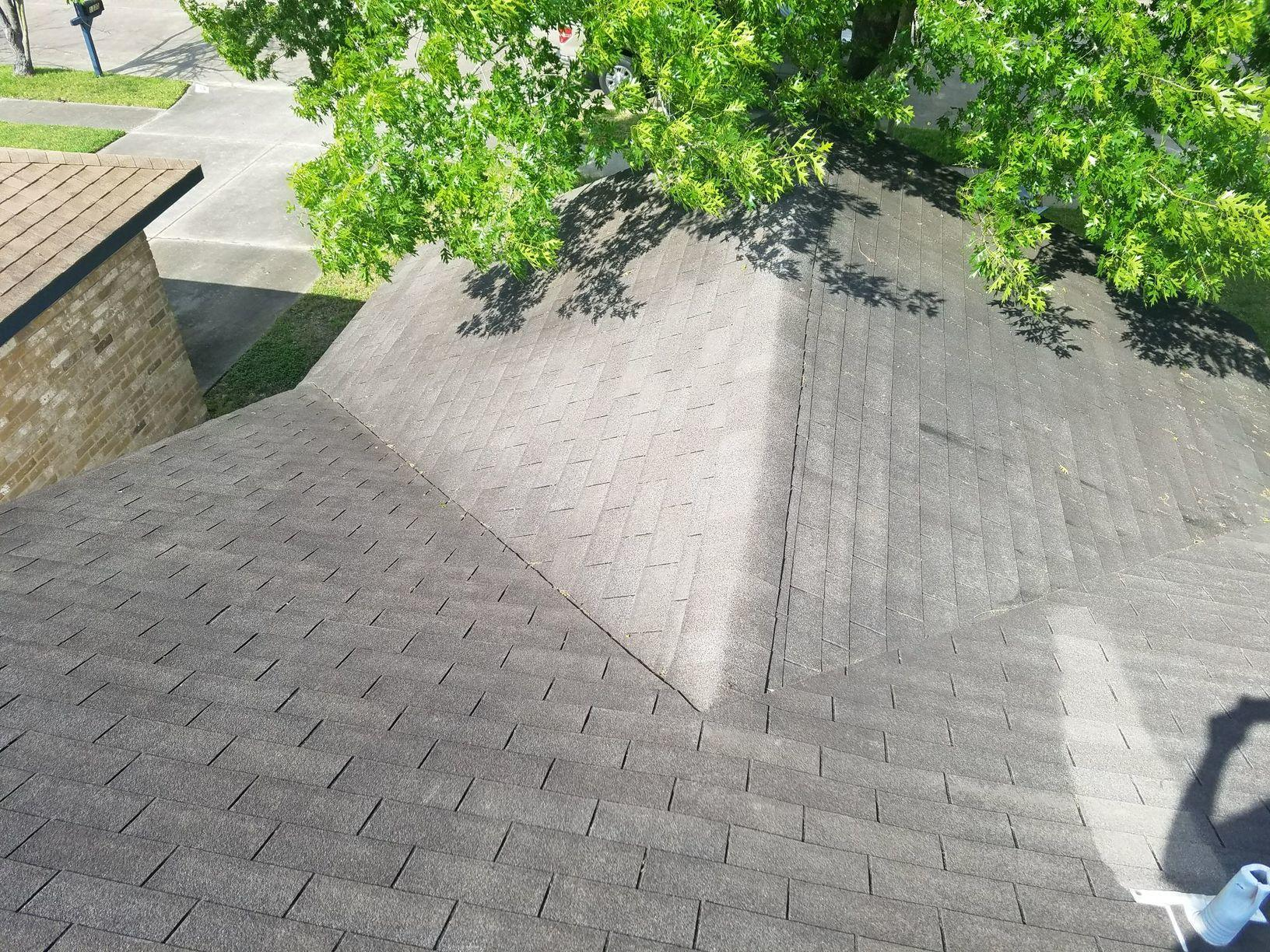 Roof Damage from Trees