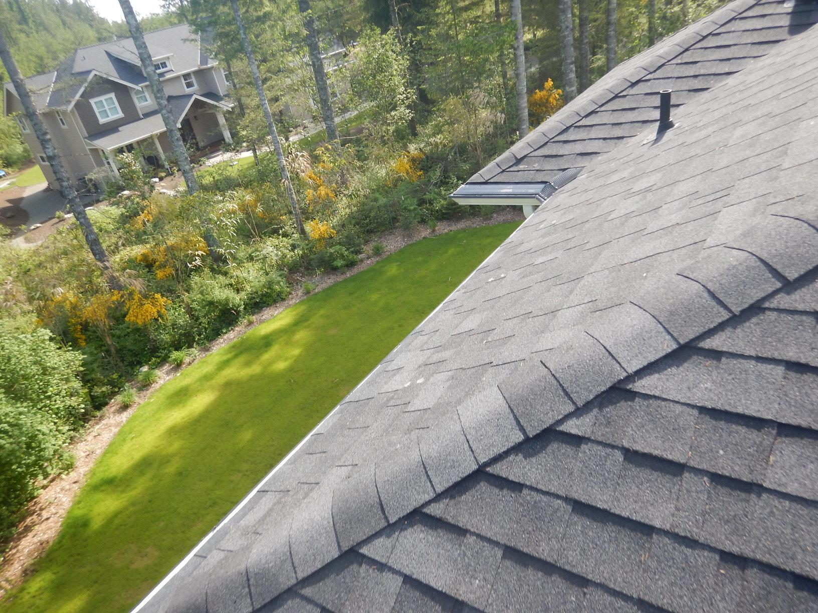 MasterShield is matched to the slope of the roof so needles will shed