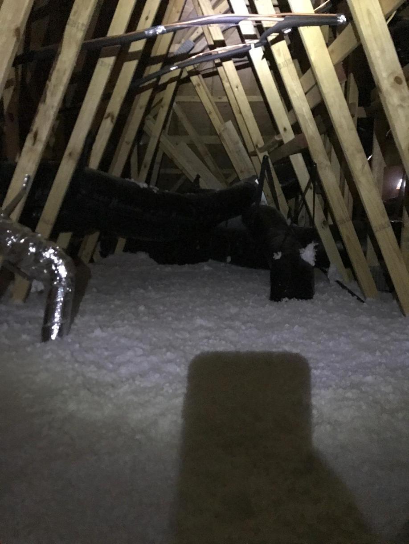 HVAC ducts, deep in fiberglass insulation