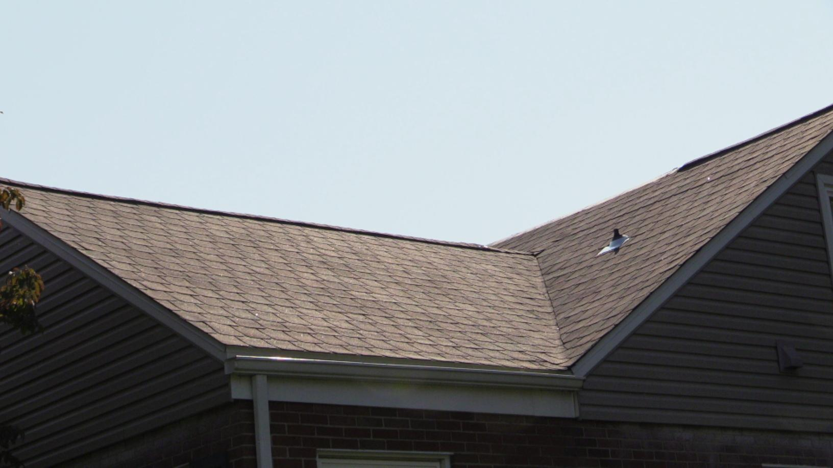 New Shingle On Installed in Allentown, PA